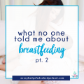 What No One Told Me About Breastfeeding, Part 2 - Everybody's Fed, Nobody's Dead Blog
